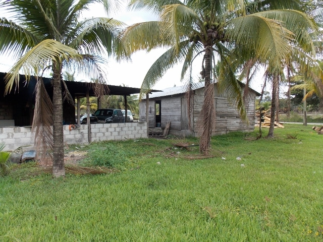 near Orange Walk Town, Orange Walk District, Belize