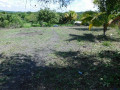 San ignacio house lot
