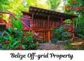Cabin for sale in Belize community